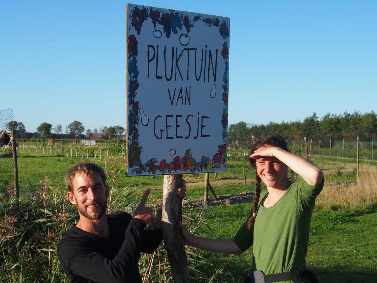 pluktuin Geestmerambacht Alkmaar